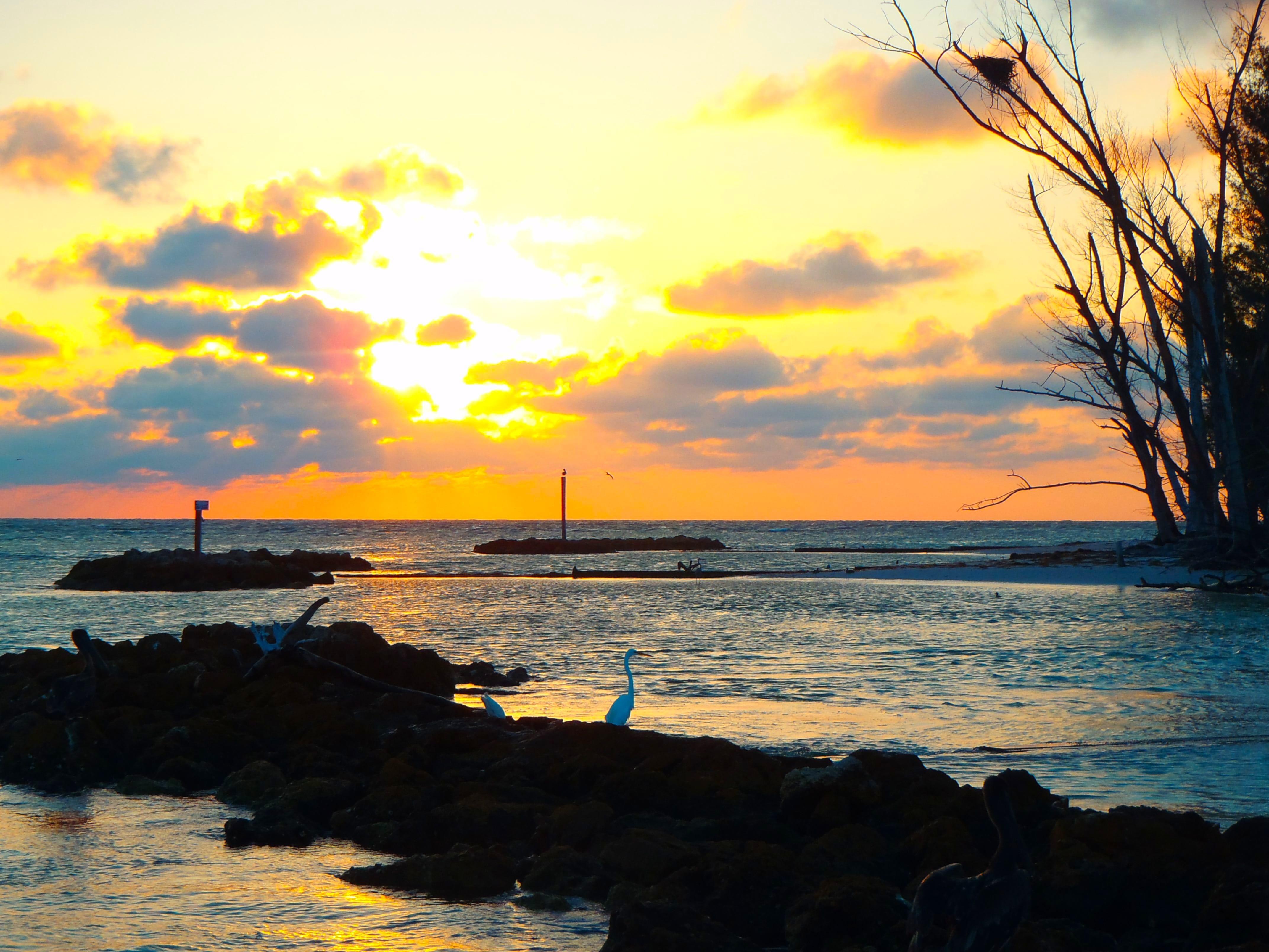 Sanibel captiva fishing charters sunrise for Captiva fishing charters