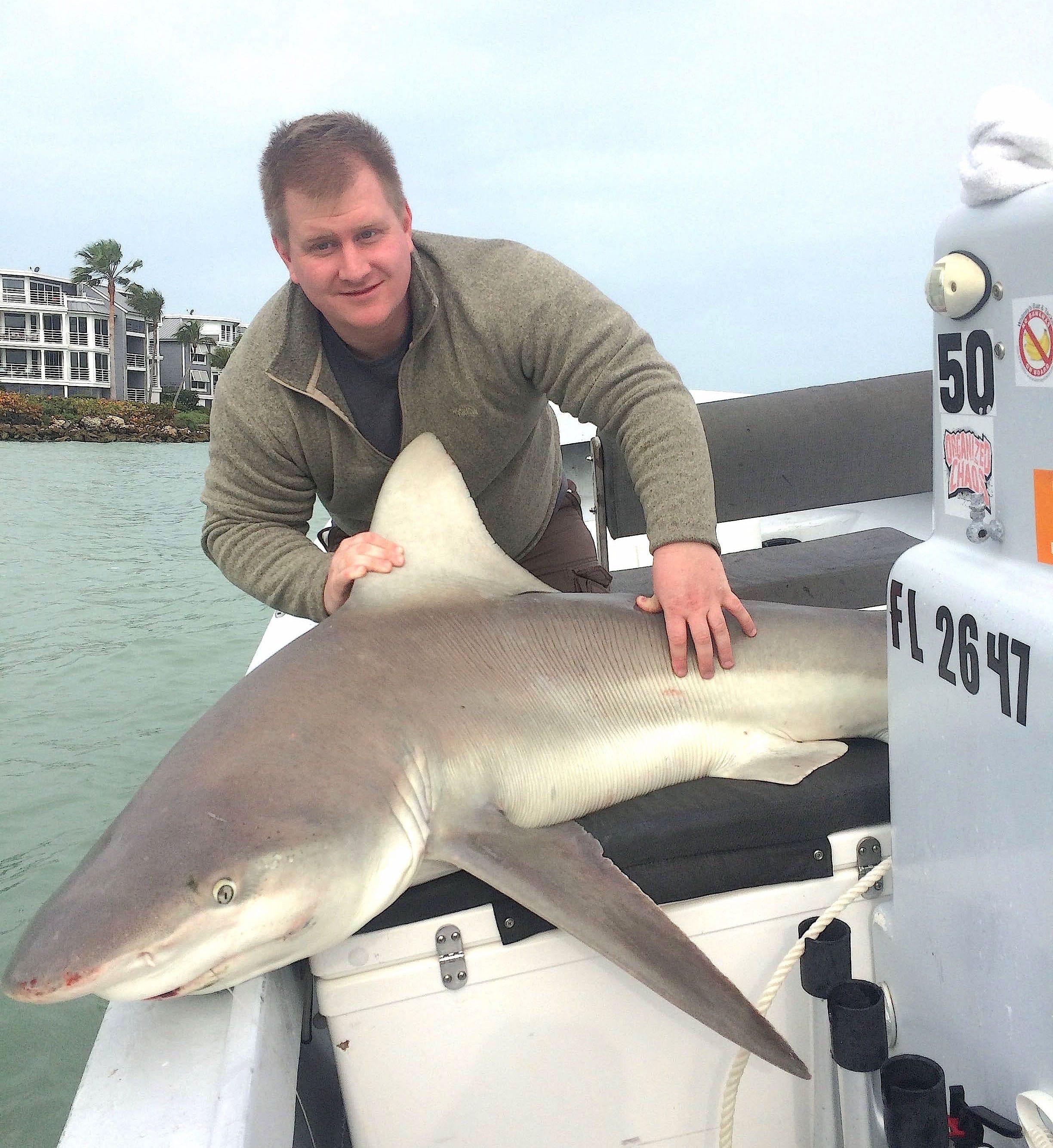 Sandbar Shark, 2-28-15, Sanibel Fishing & Captiva Fishing & Fort Myers Fishing Charters & Guide Service.