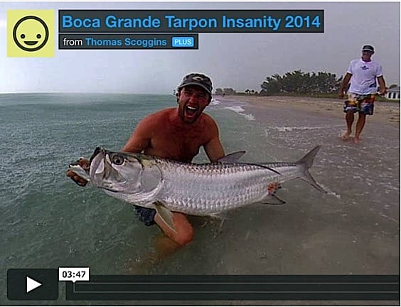 Sanibel fishing captiva fishing report boca grande pass for Boca grande tarpon fishing