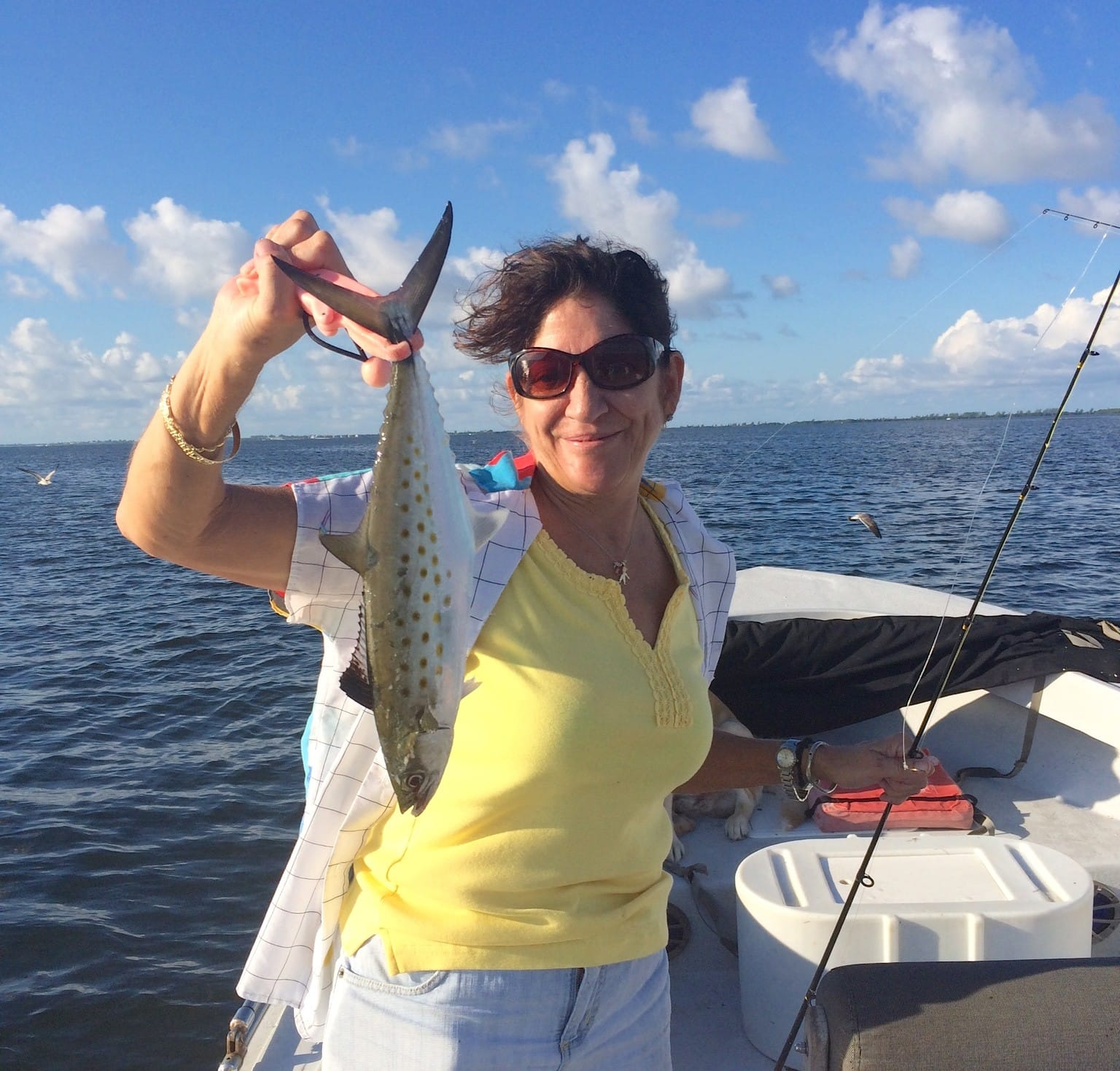 Captiva fishing thursday 10 1 15 spanish mackerel for Spanish mackerel fish