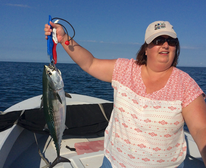 Captiva fishing thursday december 10 2015 bonita for Bonita fish recipes
