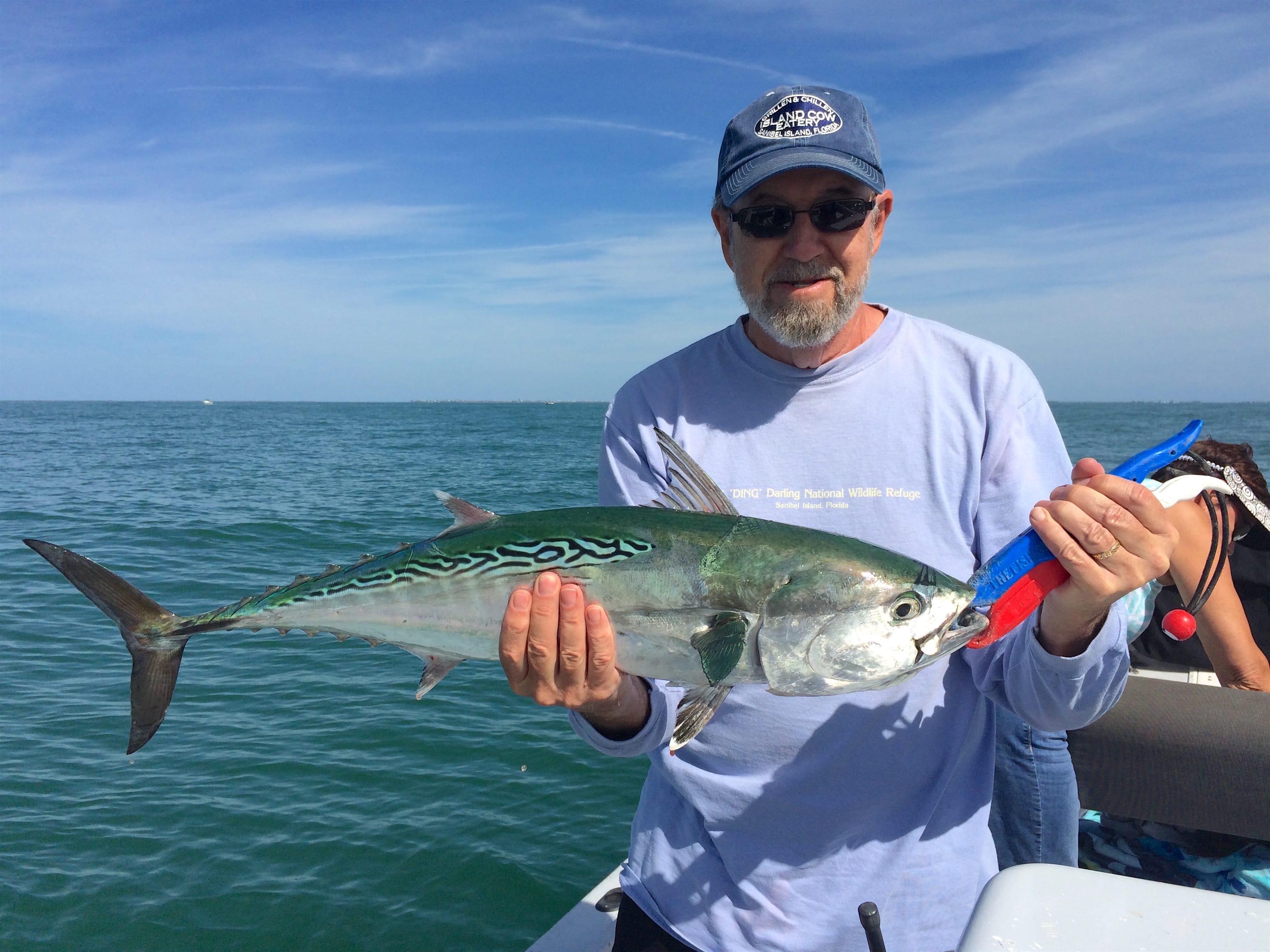 Captiva fishing tuesday february 16 2016 better for Bonita fish recipes